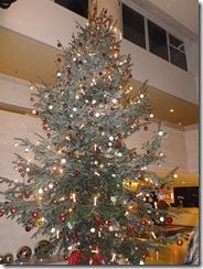 עץ בלובי מלון שרתון